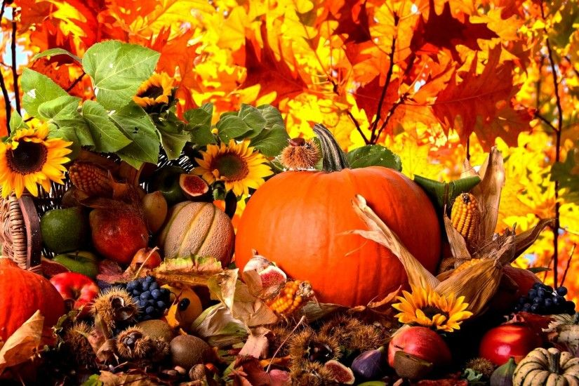Thanksgiving Wallpapers - Full HD wallpaper search - page 5