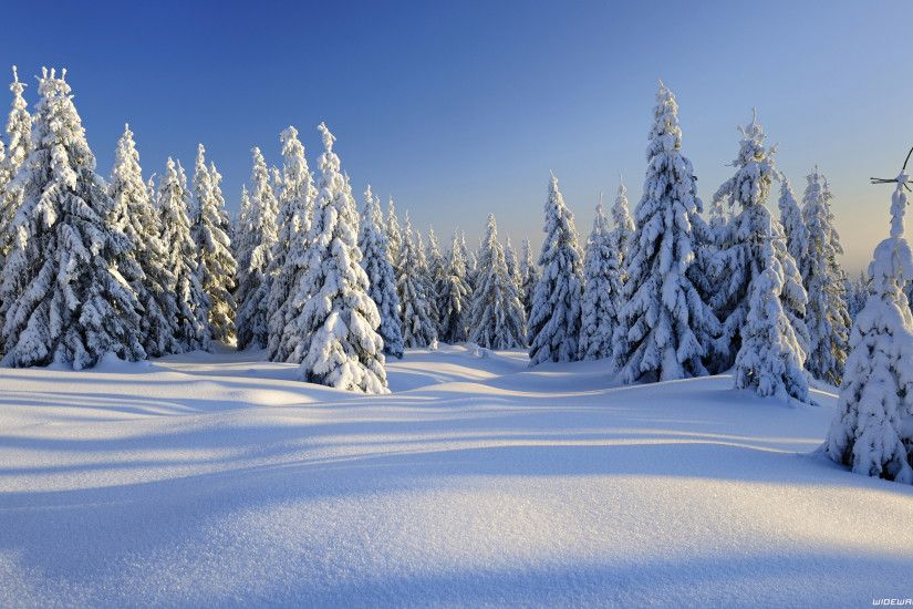 Winter wallpapers ...
