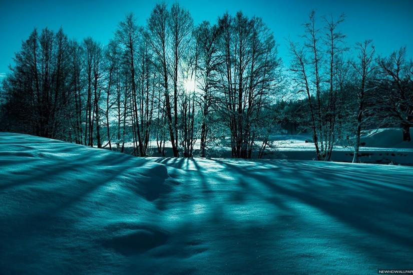 Winter Landscape Snow Nature HD Wallpapers - New HD Wallpapers