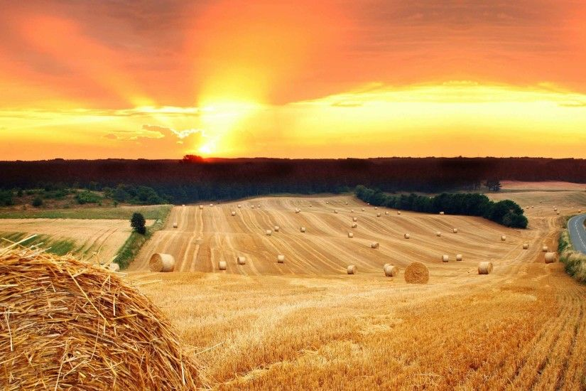 Sunrise Sunset Sun Trees Field Hay Nature Straw Road Haystack Desktop  Wallpaper Full Screen