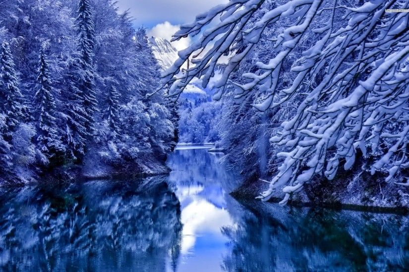Calm Lake Hidden By The Snowy Forest