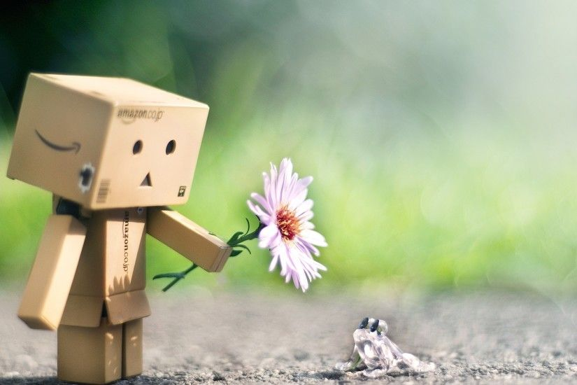 Download Wallpaper 1920x1080 danboard, flower, frog, friendship Full HD  1080p HD Background
