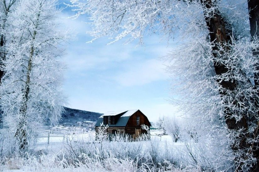 Wallpaper Nature Winter Background