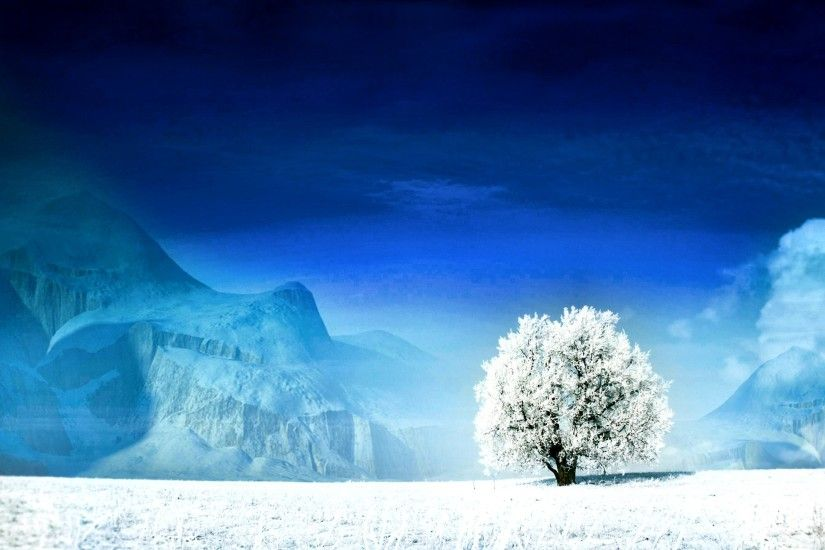 Earth - Tree Lonely Blue White Snow Winter Wallpaper