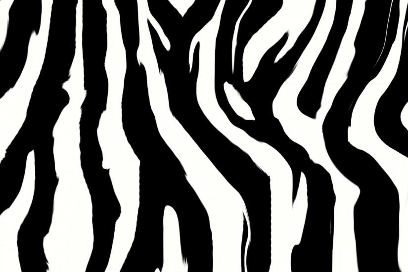 zebra print animals images pictures p os dog cat wallpaper .