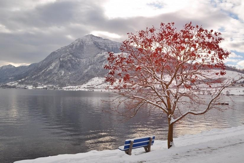 Winter Nature Wallpaper 502355 ...