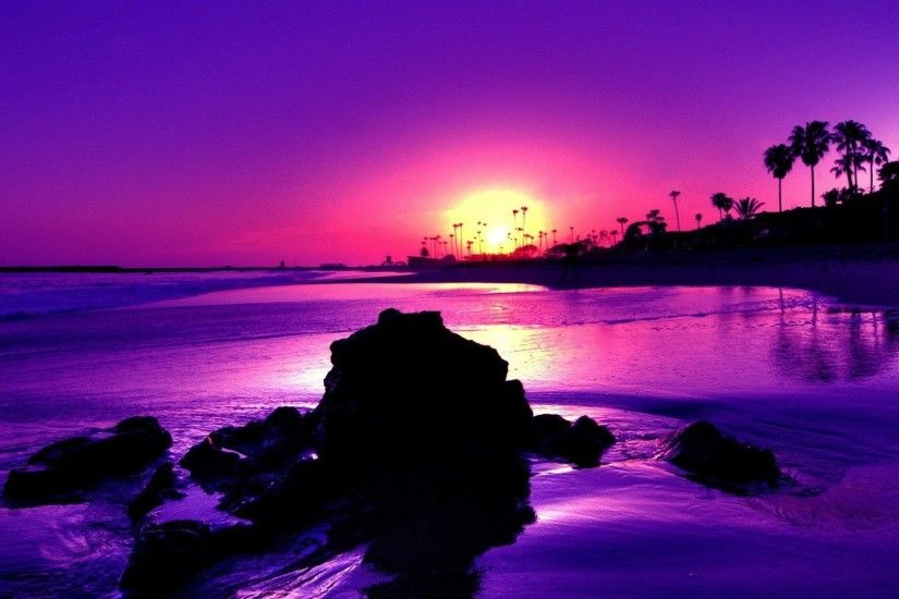 Colours Colorful Black Cool Purple Gulls Yellow Sunsets Sunrise Landscape  Beautiful Shadows Sand Scenic Reflections Blue Scene Sky Birds Foam Beaches  Mirror ...