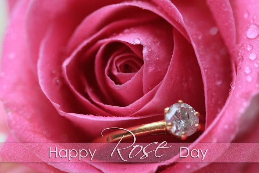 Download – Rose Day Images for Whatsapp DP Profile