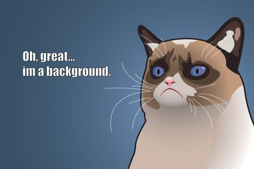 Preview wallpaper grumpy cat, tardar sauce, angry kitty, art 1920x1080