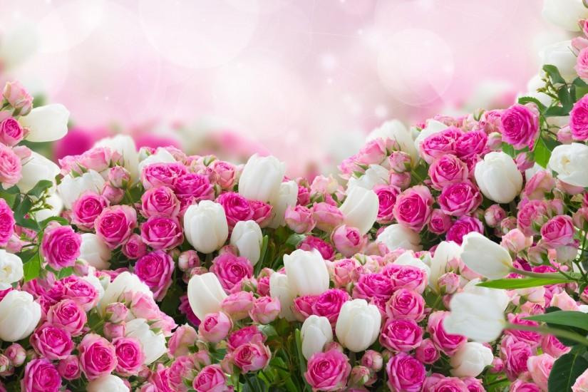 ... flowers wallpapers ...