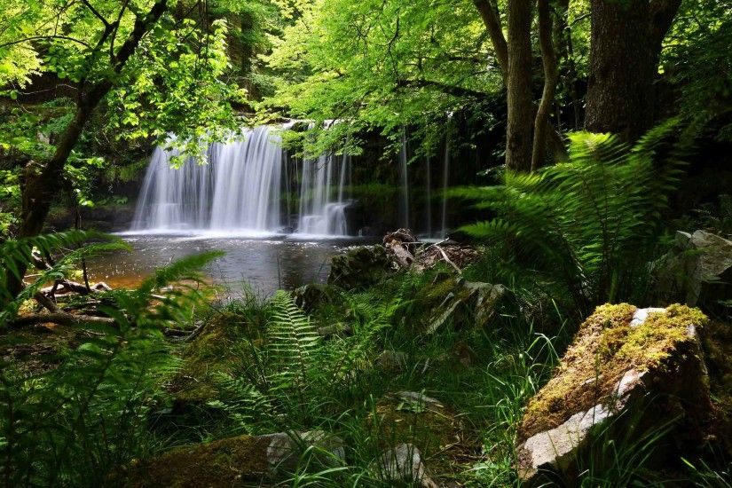 Waterfalls National Beacons Brecon England Fern Park Forest Waterfall  Nature Scenes Desktop Wallpaper