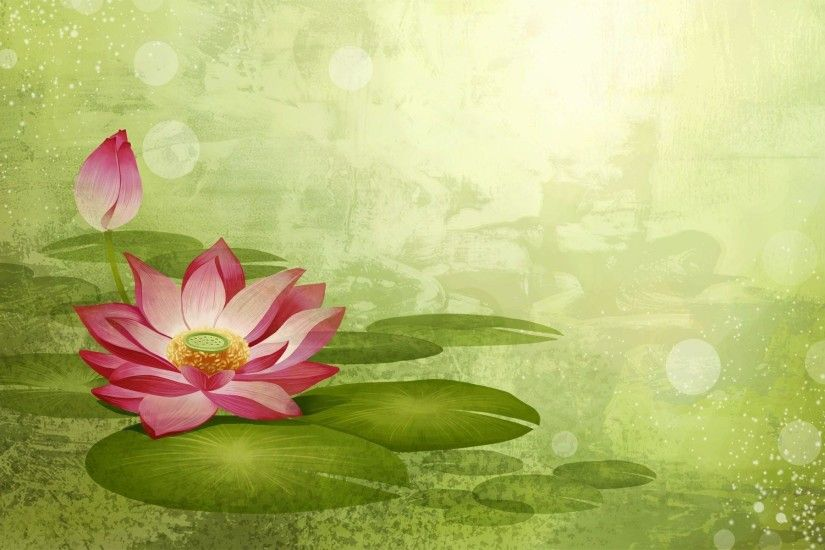 Lotus flowers wallpaper - 580796