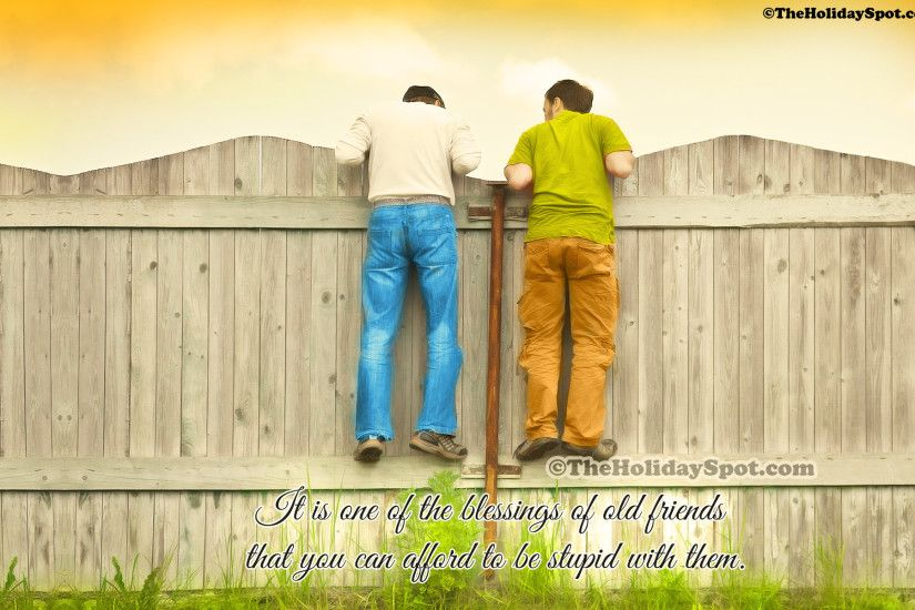High Definition Friendship wallpaper showcasing two friends on the fence.