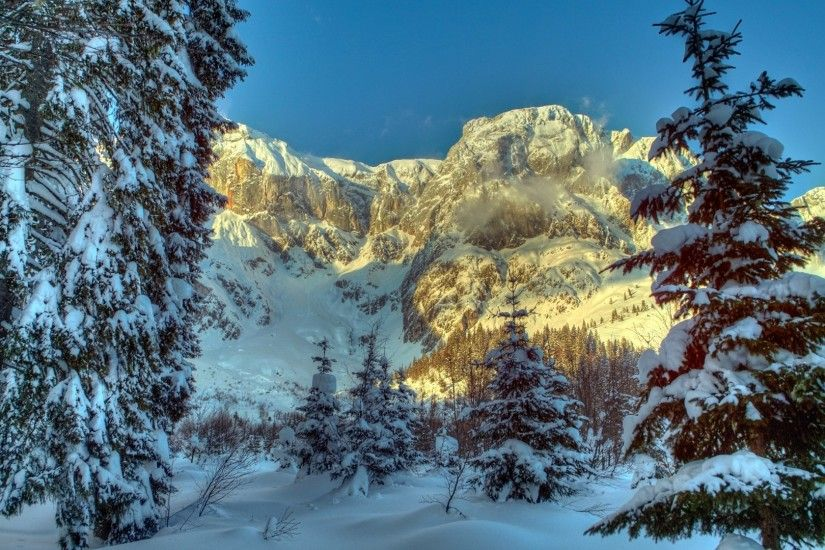 1920x1080 Wallpaper winter, mountains, austria, snow, trees, spruce, alps,