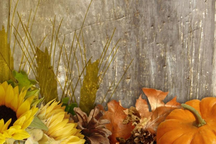 download fall background 1920x1080 for mac