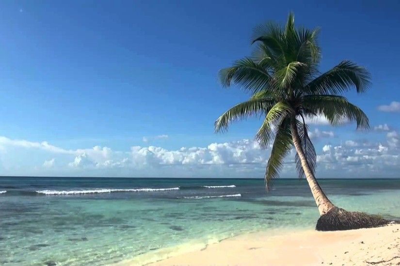 ♥♥ Relaxing 3 Hour Video of Tropical Beach with Blue Sky White Sand and  Palm Tree - YouTube