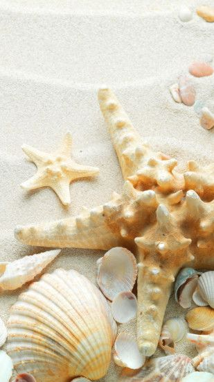 Pure Seaside Beach Starfish Seashell iPhone 8 wallpaper