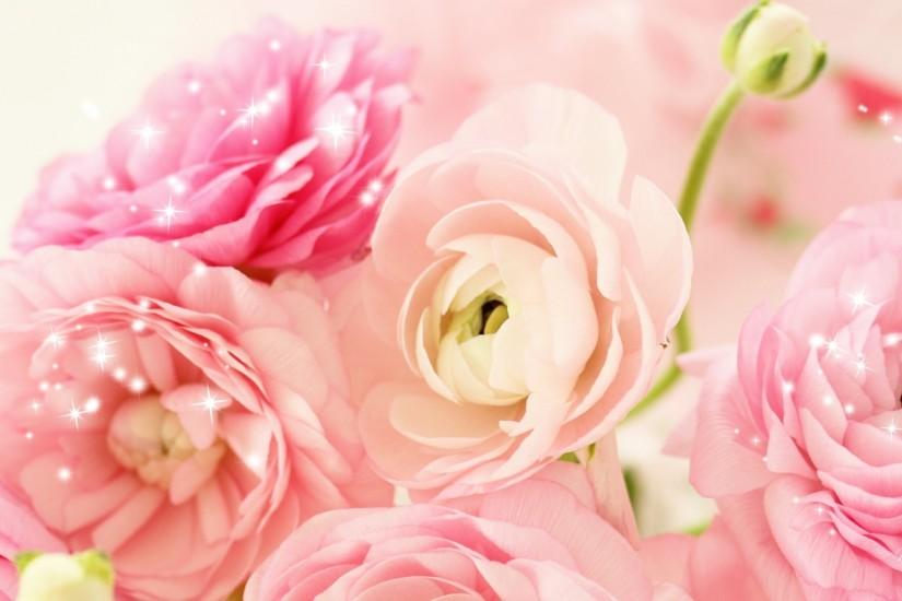 Peach Peonies Background
