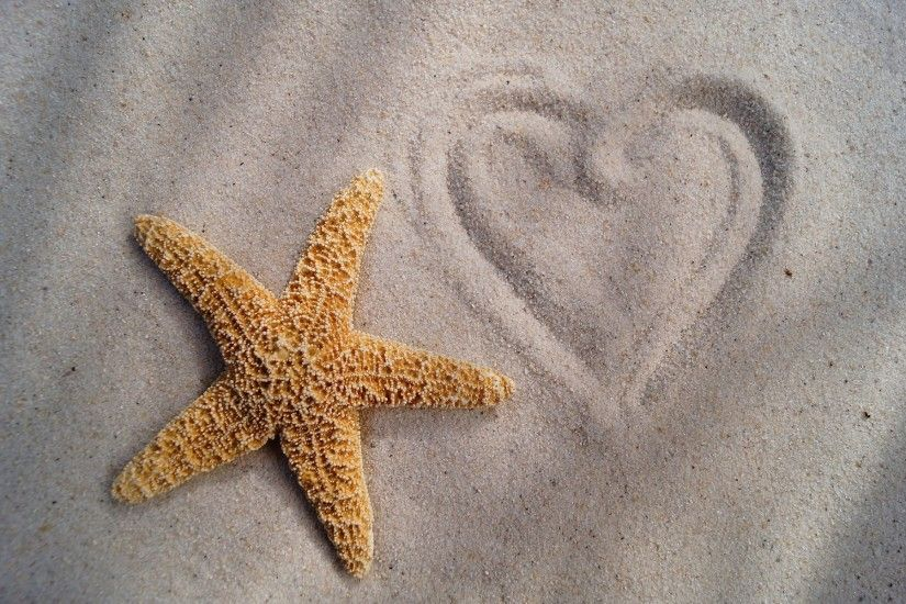Starfish Heart. Starfish Heart Desktop Background