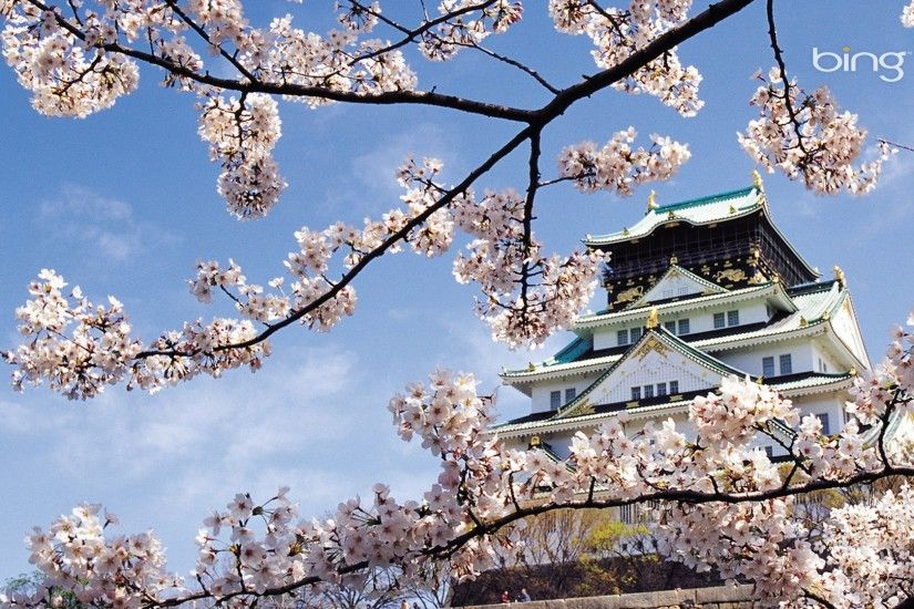 1920x1080 Wallpaper spring, cherry, blossom, palace, japan, architecture