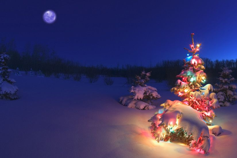 Wallpaper Of A Christmas Tree In Snowy Night #9762