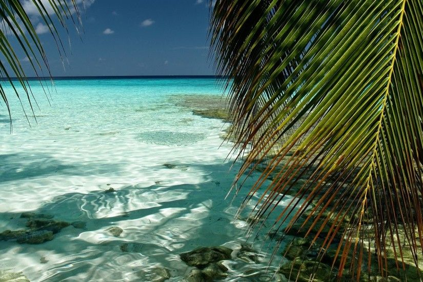 Tropical Beach Live Wallpaper Android Apps on Google Play 1920×1080 Tropical  Wallpapers Free |