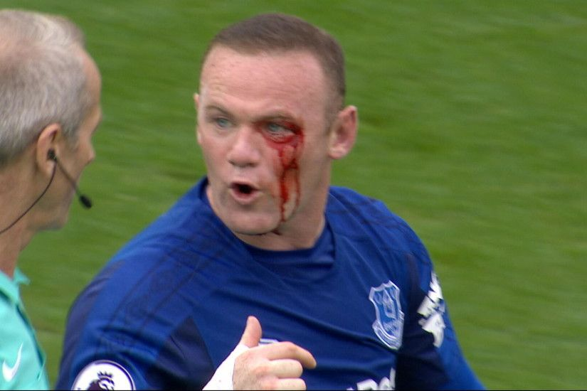 Images of Wayne Rooney Pictures of Wayne Rooney ...