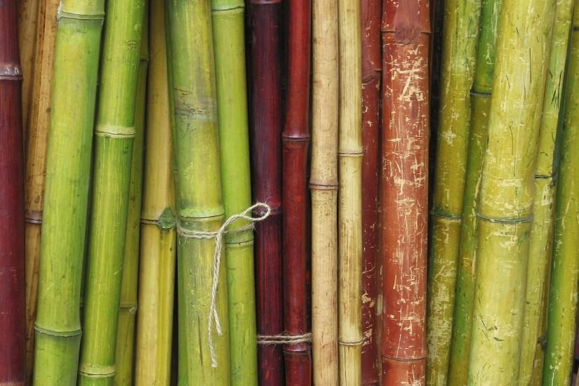popular bamboo background 1920x1080