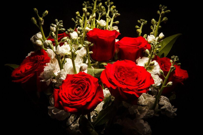Photo Bouquets Red Roses Flowers Matthiola Black background 2560x1440