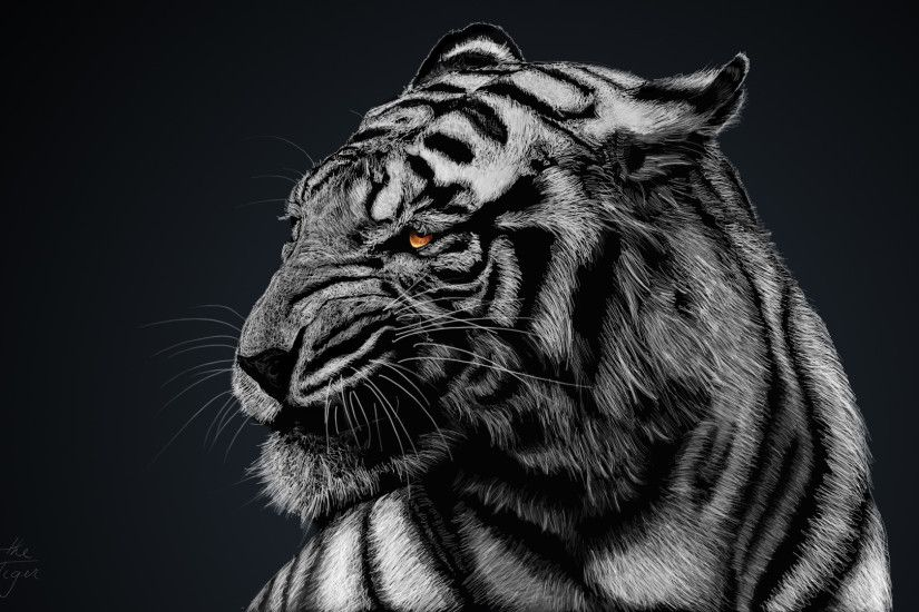 High Resolution Tiger Black and White HD Wallpaper Full Size .