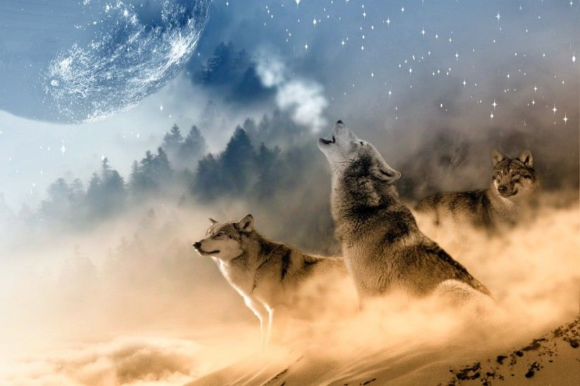 Animal - Wolf Animal Moon Fantasy Wallpaper