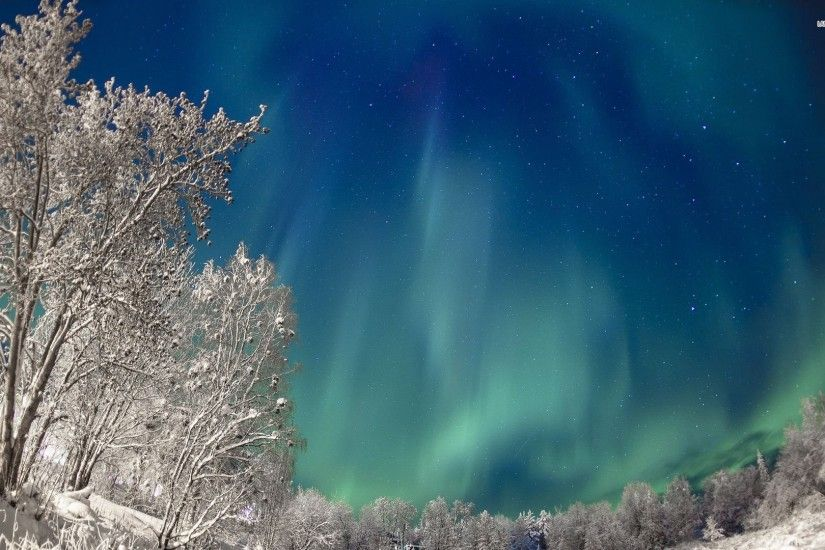 Wonderful Northern Lights On A Winter Night