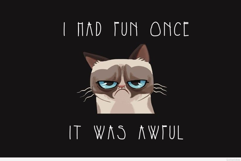 ... High-Quality-Funny-Grumpy-Cat-Quotes-Wallpaper