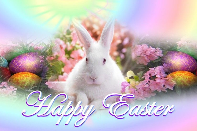 cute white rabbit bunny easter wishes hd background