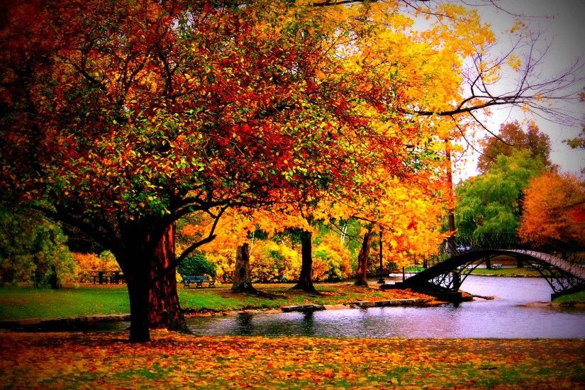 Fall-Season-Scenery-Desktop-Wallpaper