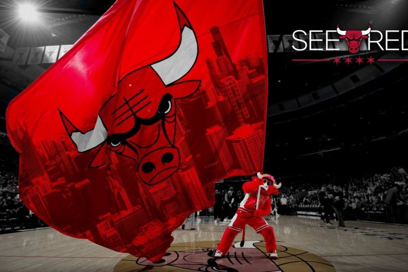 8. chicago-bulls-wallpapers-HD8-600x338