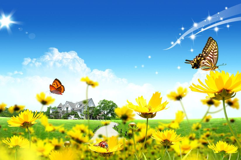 Sky Butterfly Desktop Backgrounds Free