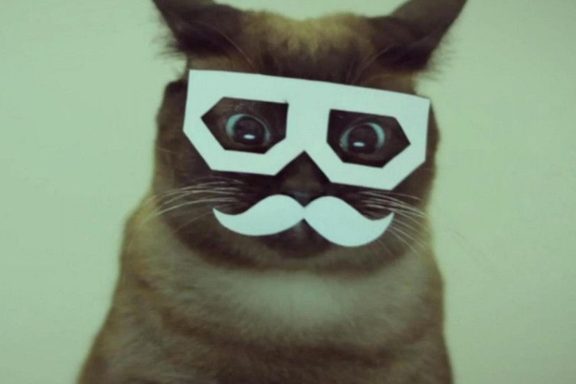 Mustache-Cats-3Wallpapers-iPad
