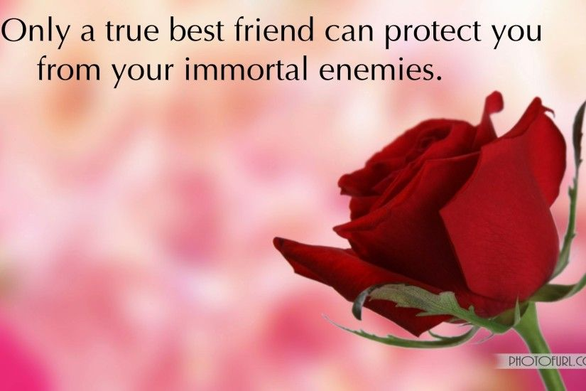 Beautiful Flowers With Friendship Quotes Friendship Wallpapers With Quotes  | Free Wallpapers