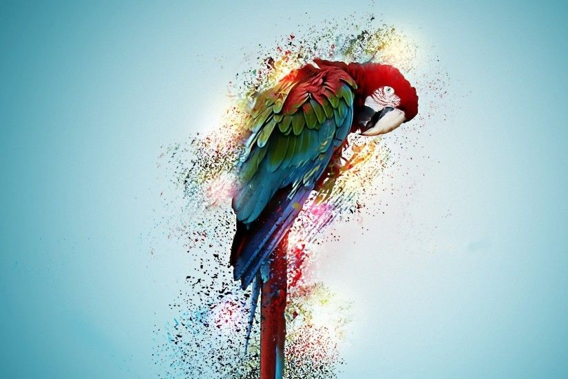 ... beautiful parrot bird wallpaper hd free download ...