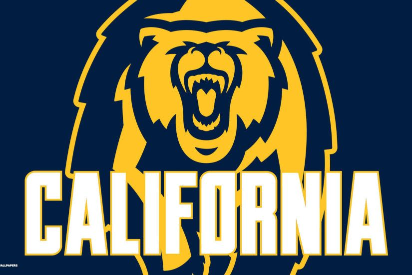 Cal Golden Bears Wallpapers Price Compare 1024×576 California Golden Bears  Wallpapers (25 Wallpapers