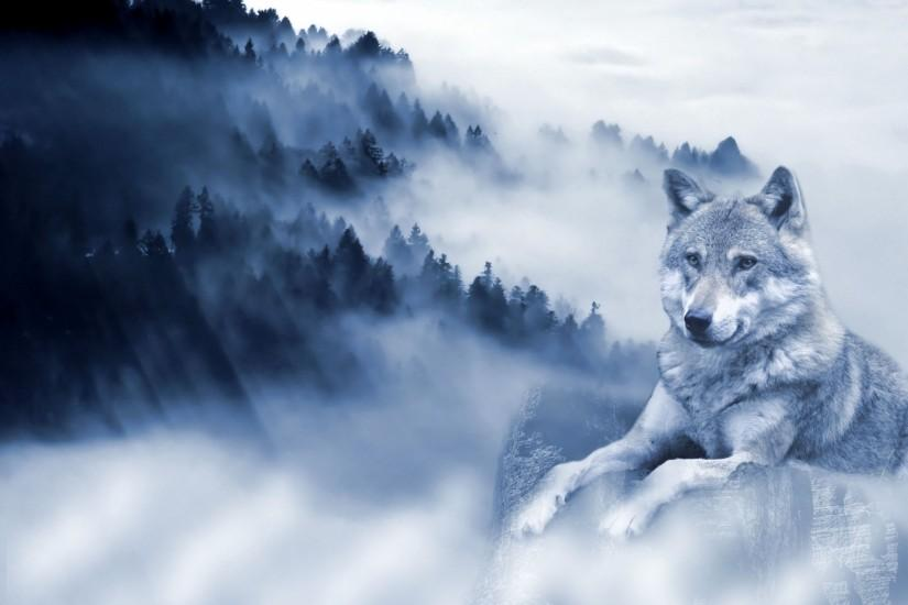 full size wolf background 1920x1370