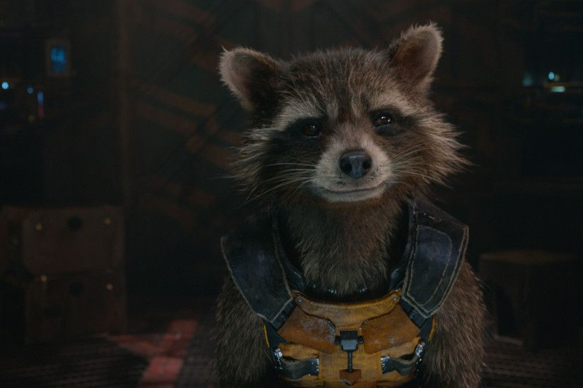Rocket Raccoon From Marvel's Guardians of the Galaxy wallpaper - Click  picture for high resolution HD wallpaper