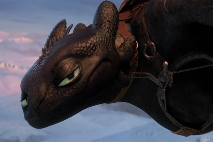 How To Train Your Dragon Toothless Wallpapers free.