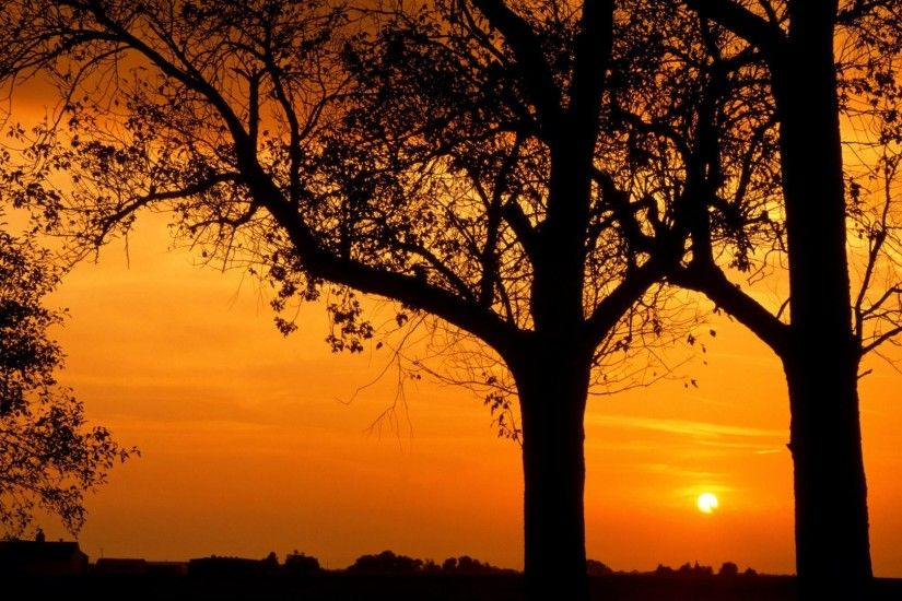 Nature, Illinois,sunset,cool Images, Trees, Stars, Backgrounds, View, View