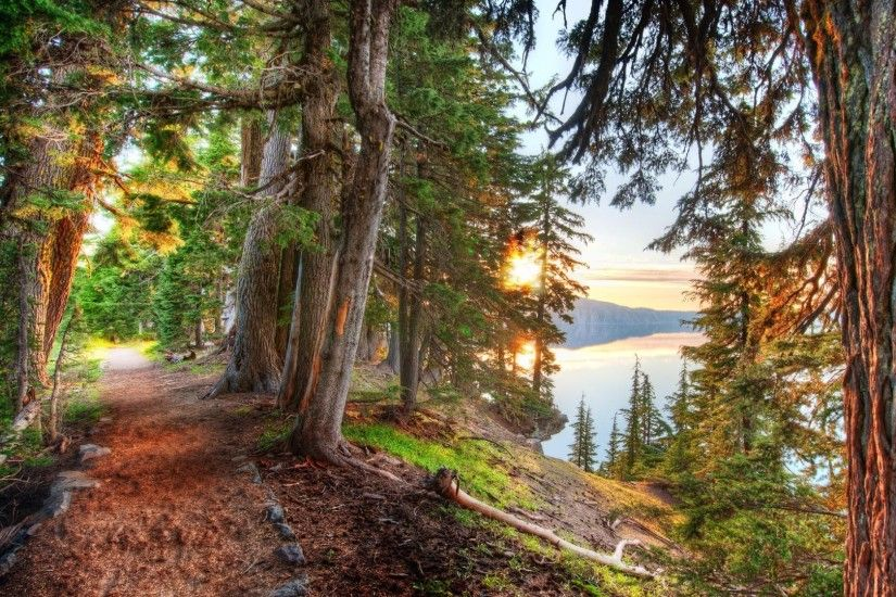 nature, HDR, Landscape, Lake, Trees, Forest, Path, Dirt Road Wallpapers HD  / Desktop and Mobile Backgrounds