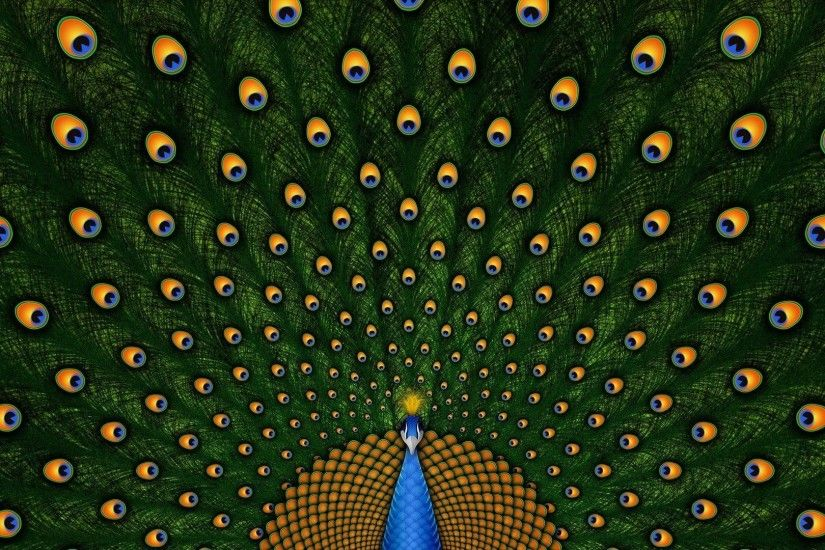 wallpaper.wiki-Peacock-Feathers-HD-Photo-PIC-WPE002034