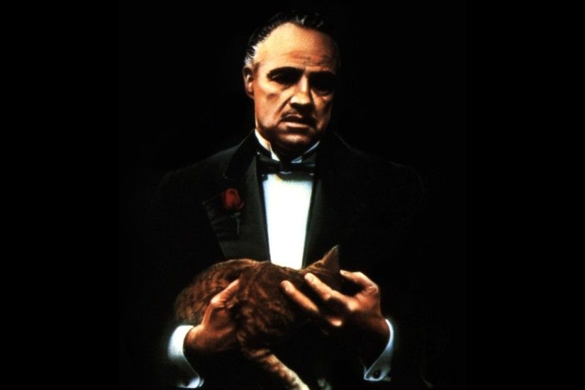 marlon brando the godfather cat Wallpapers HD / Desktop and Mobile  Backgrounds