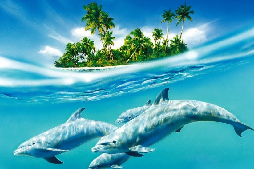 ... Dolphin Wallpapers | Best Wallpapers