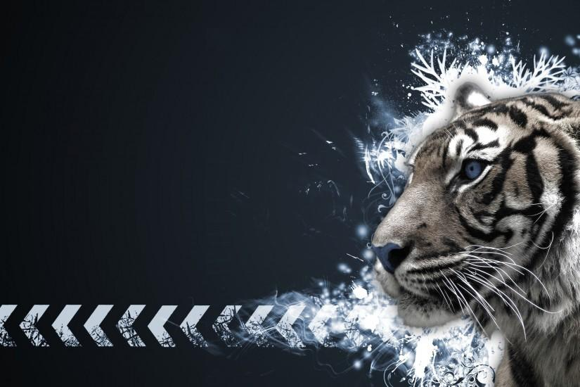 <b>Tiger Wallpapers</b>, 100% Quality <b>